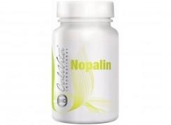 NOPALIN CaliVita, Błonnik, Odchudzanie, Praca jelit, Oczyszczanie organizmu