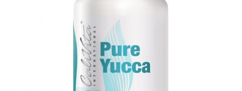 Pure Yucca CaliVita, Odtruwanie organizmu, Zapalenie stawów